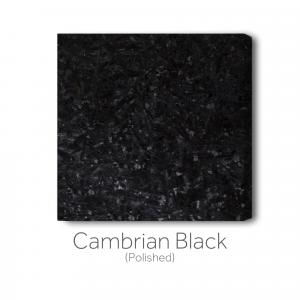 Cambrian Black - Polished