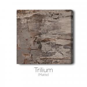 Trilium