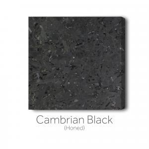 Cambrian Black - Honed