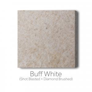 Buff - White Shot Blast and Diamond Brushed